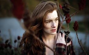 Picture look, girl, portrait, Delaney