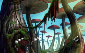 Picture trees, mushrooms, home, plants
