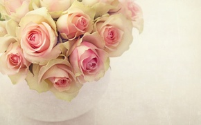 Picture pink, roses, bouquet, vase