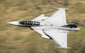 Picture Can JAS 39 Gripen, the fourth generation fighter, Multi-role fighter