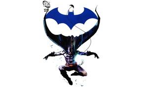 Picture Logo, Batman, Batman
