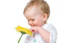 Picture flower, child, baby, child, kid, Infants