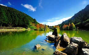 Picture the sky, trees, fish, lake, pond, stones, hills, moss, Sunny