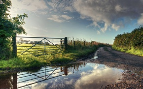 Picture road, field, summer, nature, the fence, puddle