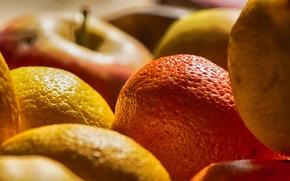 Picture macro, food, fruit