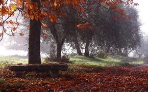 Picture autumn, Park, bench