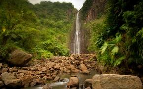 Wallpaper nature, river, stones, waterfall, jungle