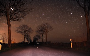 Picture road, the sky, trees, the moon, stars, Night, moon, road, sky, trees, night, stars