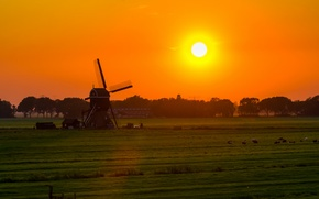 Picture field, the sky, the sun, trees, sunset, windmill