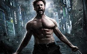 Picture Wolverine, Hugh Jackman, Logan, Hugh Jackman, The Wolverine, Wolverine: The Immortal