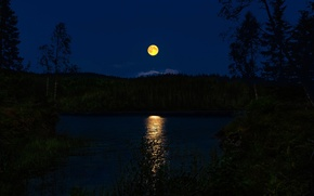 Picture forest, night, river, Norway, the full moon, moonlight