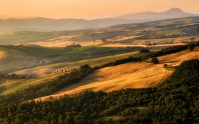 Picture trees, hills, field, Italy, houses, Tuscany
