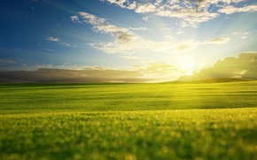 Picture greens, field, the sky, grass, the sun, clouds, rays, light, nature, green, hills, landscapes, view, …