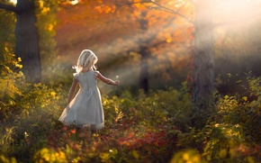 Picture autumn, forest, nature, dandelion, girl