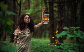 Wallpaper trees, the bushes, one, in the woods, hairstyle, brunette, the evening, girl, lantern, dress