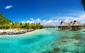Wallpaper sea, tropics, palm trees, the ocean, houses, Bora Bora