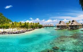 Picture sea, tropics, palm trees, the ocean, houses, Bora Bora