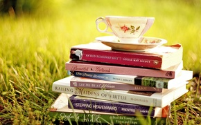 Picture grass, books, Cup, saucer