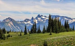 Picture mountains, morning, ate, Washington, USA, Mount Rainier National Park