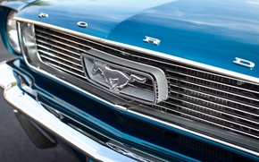 Picture retro, mustang, classic, the front