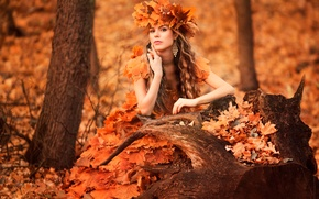 Picture forest, leaves, girl, wreath, autumn style, sad time
