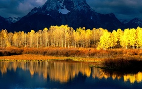 Picture the sky, water, clouds, snow, trees, mountains, reflection, river, gold, Forest