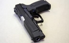 Wallpaper gun, weapons, Rook