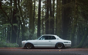 Picture nissan, silver, skyline