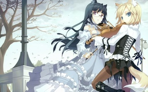 Picture trees, girls, anime, ears, tails, tokyo cpe - gothic, violin, h2so4