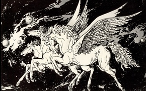 Wallpaper Photos, Black and White, Pegasus, Space Fantasy