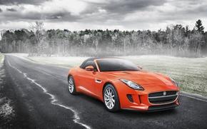 Picture Jaguar, Orange, Car, Sport, Road, F-Type