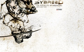 Picture water, squirt, skull, mechanism, Metal, Switzerland, Industrial, Sybreed, the Pulse of Awakening