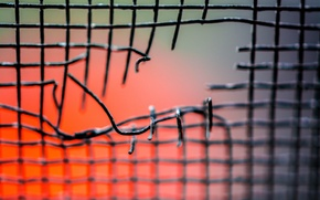 Picture macro, mesh, hole, bokeh