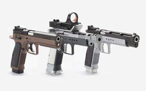 Picture gun, pistol, extreme, xtreme, handgun, Tanfoglio, eaa witness, Tanfoglio Xtreme, eaa