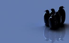 Picture birds, penguins, figure