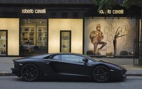 Picture street, profile, lamborghini, street, aventador, Lamborghini, aventador, shop, matte black, black matte, Roberto Cavalli, lp700, …
