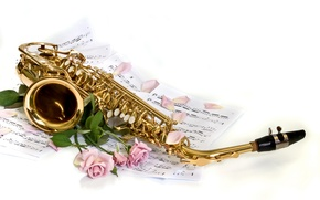 Picture BACKGROUND, PETALS, WHITE, FLOWERS, ROSES, NOTES, SAXOPHONE