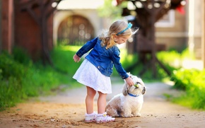 Picture greens, grass, leaves, trees, flowers, nature, children, background, tree, widescreen, Wallpaper, mood, foliage, dog, blur, ...
