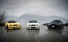 Picture white, reflection, yellow, black, bmw, shadow, BMW, white, black, front view, yellow, e46