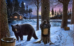Picture bear, bears, winter, nature, Picture, the moon, Midnight snack, Ervin Molnar, house, hut, river, forest