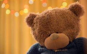 Picture bear, bear, bear, teddy, soft toy, Teddy bear