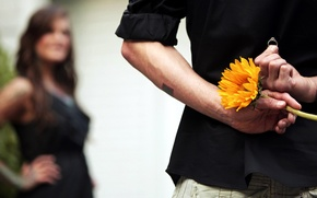 Wallpaper flower, girl, the situation, ring, guy