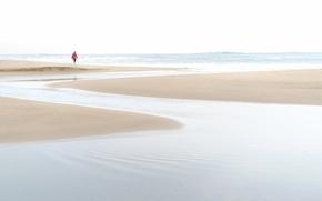 Picture sea, beach, the sky