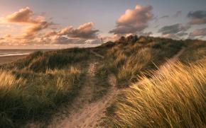 Picture sand, sea, grass, clouds, shore, treatment, Winterton Light