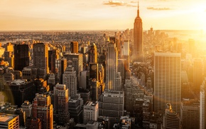 Picture the city, dawn, view, building, home, New York, skyscrapers, morning, roof, panorama, USA, USA, Manhattan, …