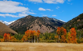 Picture autumn, the sky, clouds, trees, mountains