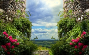 Picture the sky, clouds, flowers, wall, Nature, ruins, sky, landscape, nature, flowers, walls, scenery, ruins