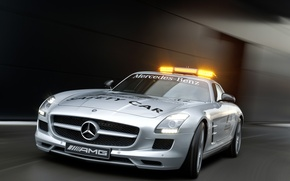 Picture 2010 F1 Safety Car, AMG, Mercedes SLS