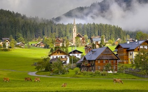 Wallpaper home, Austria, cows, village, Austria, Gosau Village