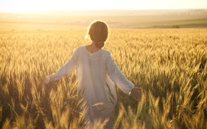Picture one, freedom, wheat, one, field, girl, woman, yellow, dress, girl, from the back, walk, the ...